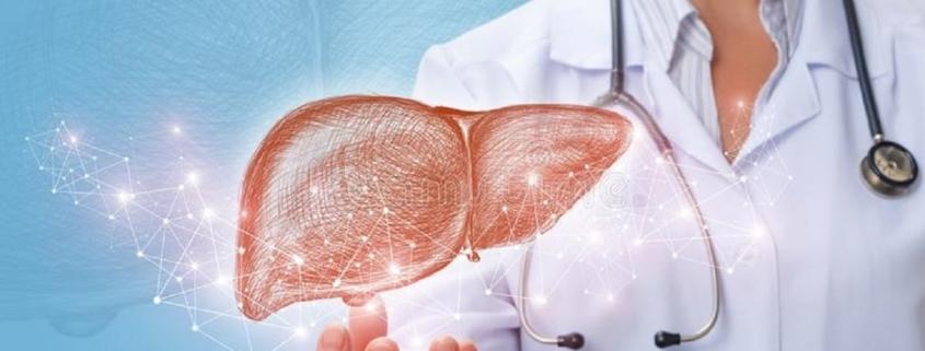 detox important liver